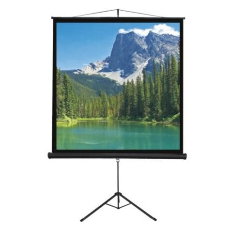 Tela de Projeção Tripé Trace Board TPS60 - 150x150cm - 1:1